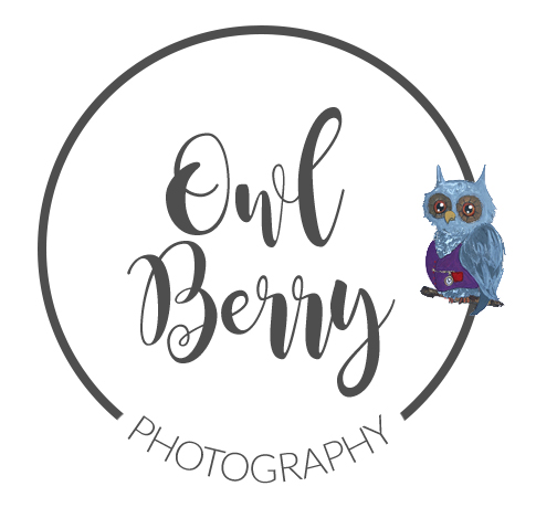 Owl Berry Photography
